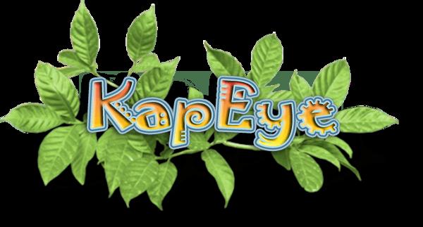 KapEye.net